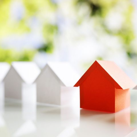 Stamp Duty & Capital Gains